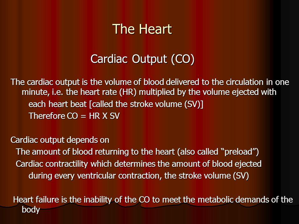 The Heart Cardiac Output (CO)