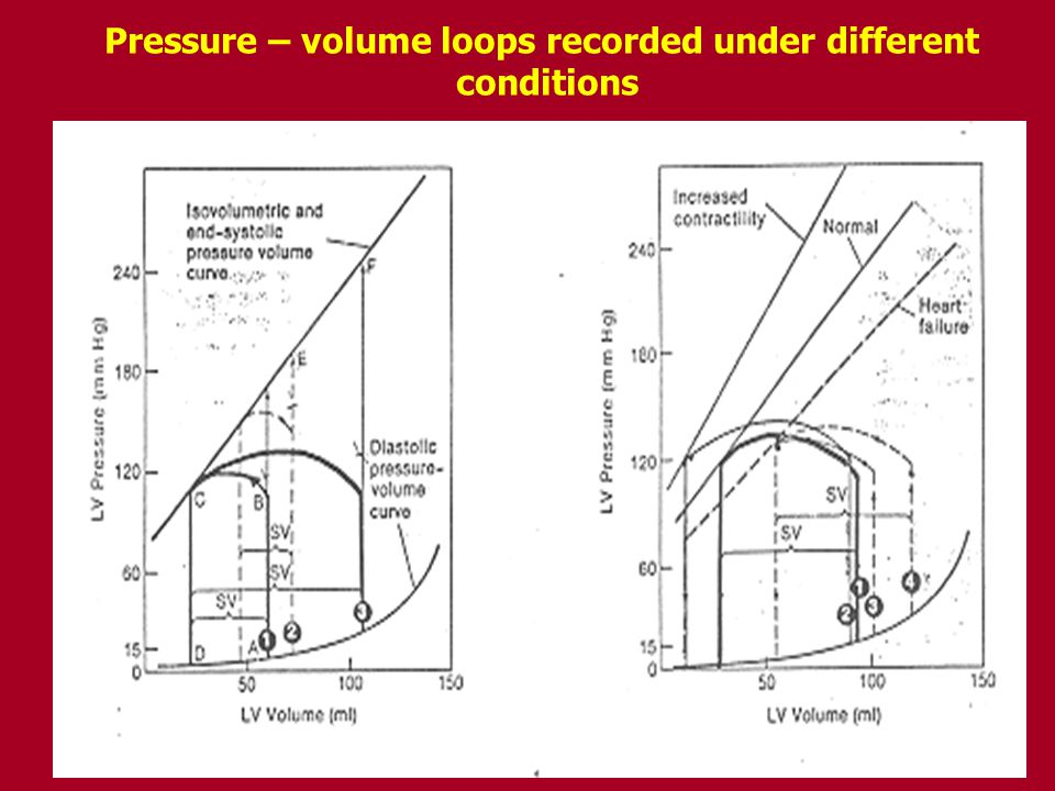 Pressure – volume loops recorded under different