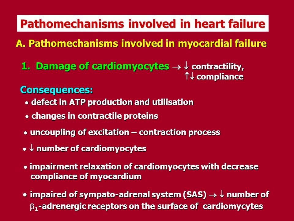 Pathomechanisms involved in heart failure
