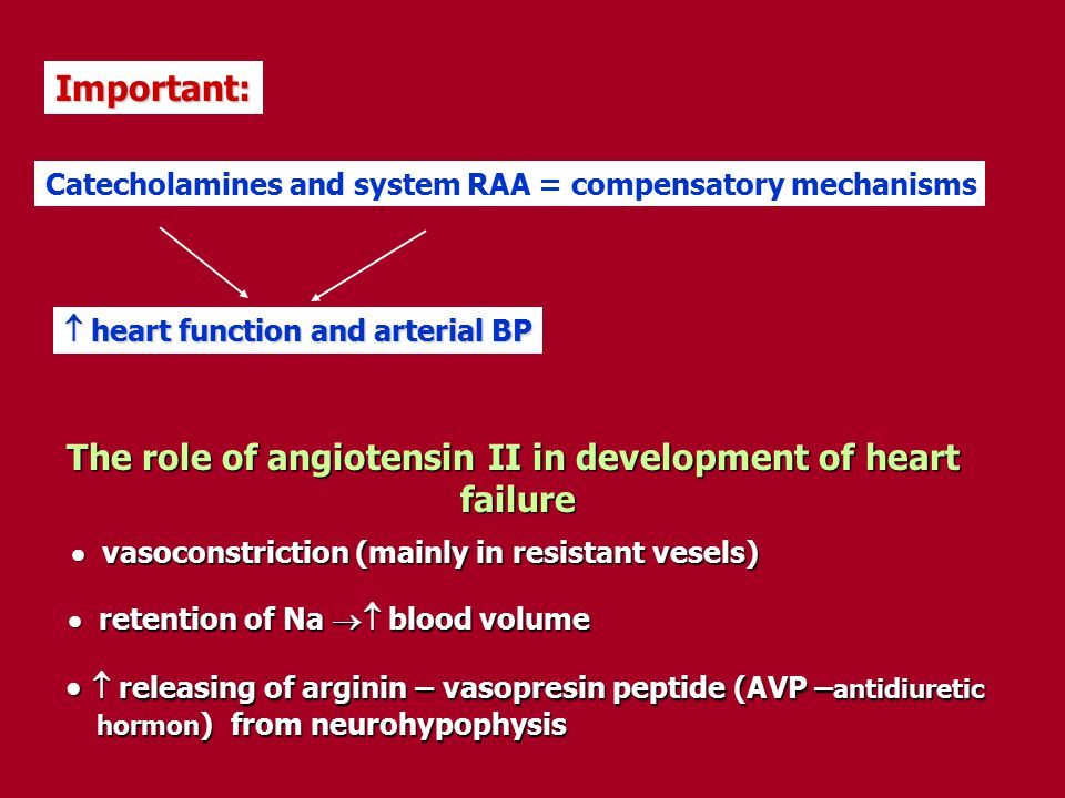The role of angiotensin II in development of heart