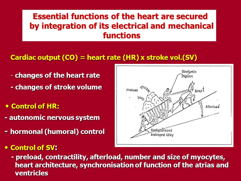 by integration of its electrical and mechanical