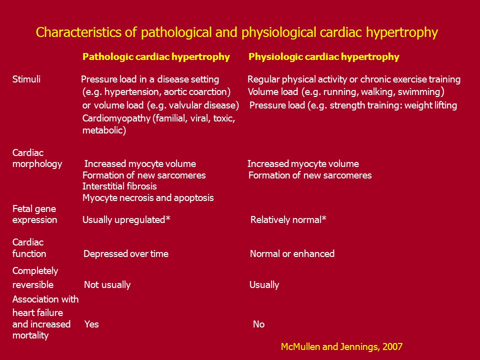 Characteristics of pathological and physiological cardiac hypertrophy