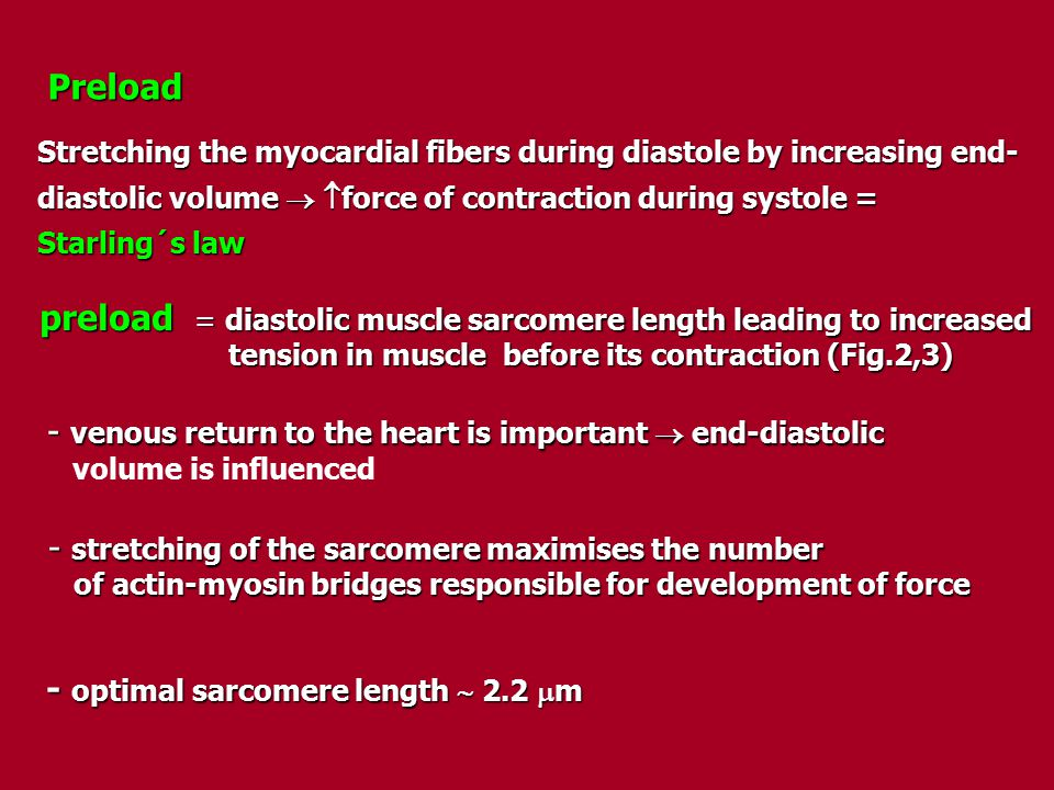 preload = diastolic muscle sarcomere length leading to increased