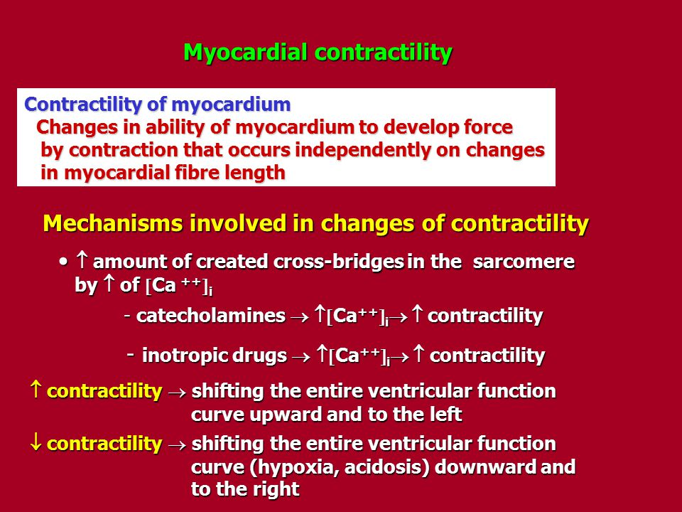 Mechanisms involved in changes of contractility