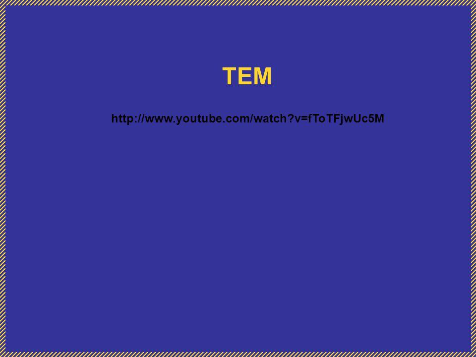 TEM http://www.youtube.com/watch v=fToTFjwUc5M