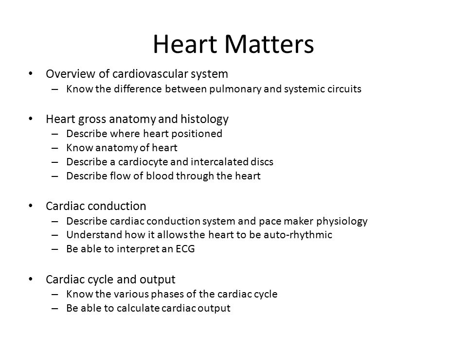 Heart Matters Overview of cardiovascular system