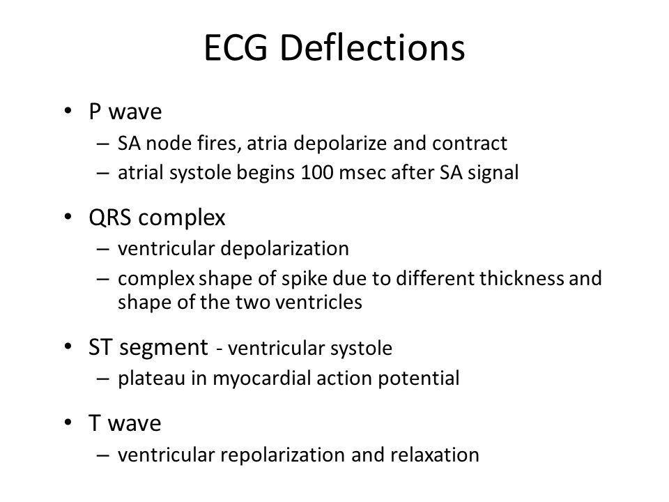 ECG Deflections P wave QRS complex ST segment - ventricular systole
