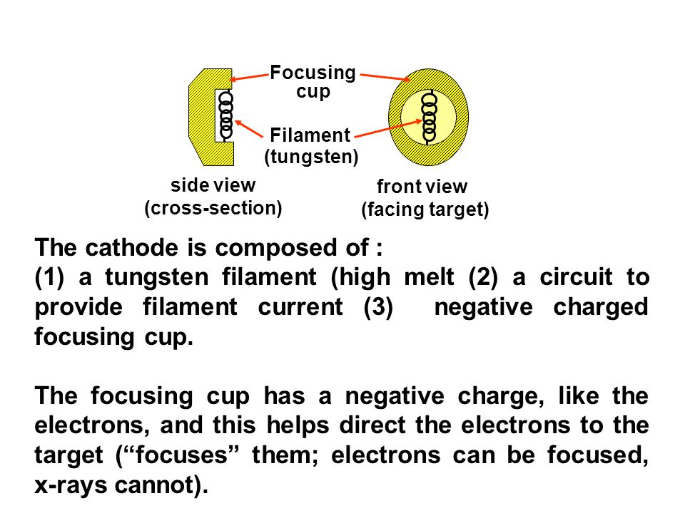 The cathode is composed of :