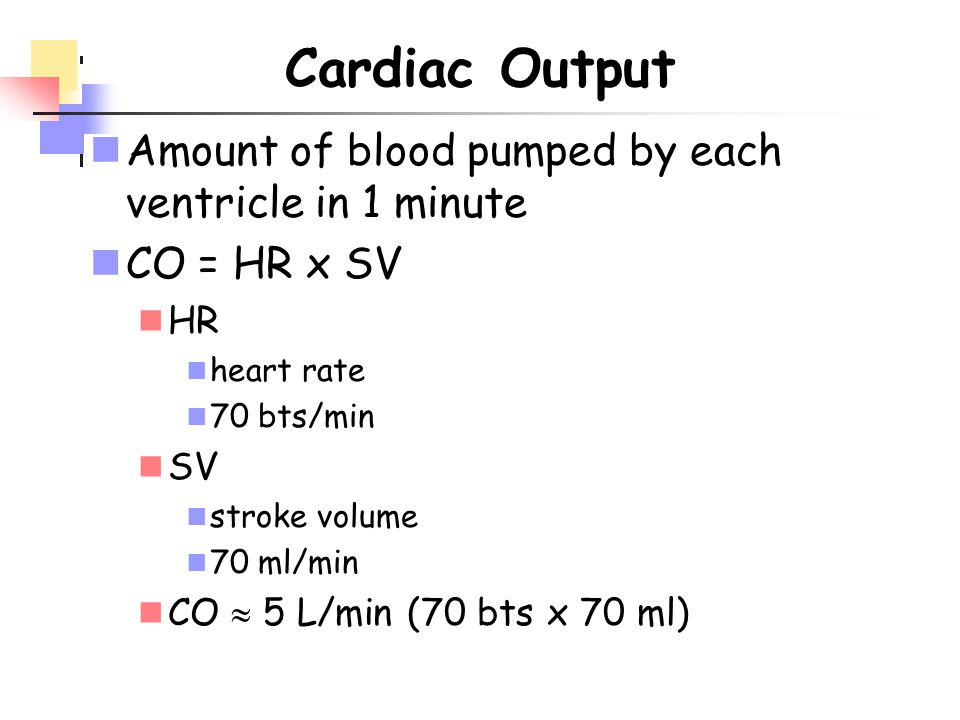 Cardiac Output Amount of blood pumped by each ventricle in 1 minute