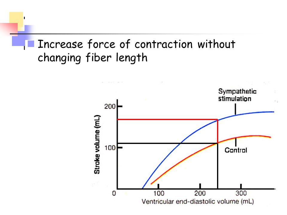 Increase force of contraction without changing fiber length