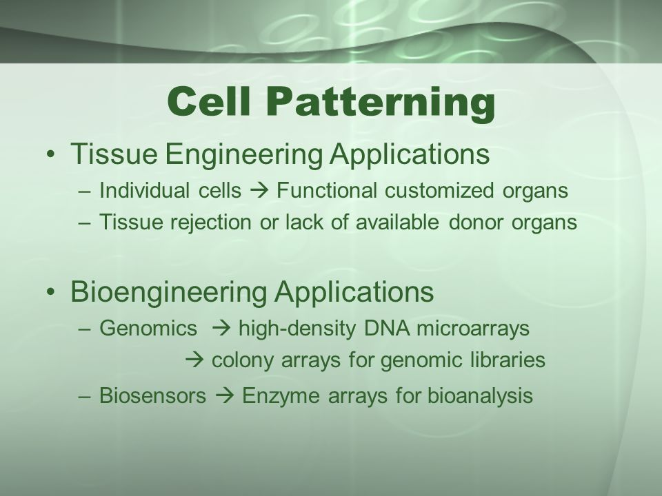 Cell Patterning Tissue Engineering Applications