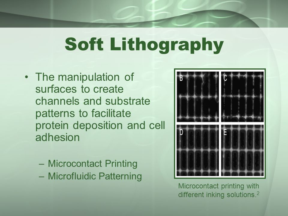 Soft Lithography The manipulation of surfaces to create channels and substrate patterns to facilitate protein deposition and cell adhesion.