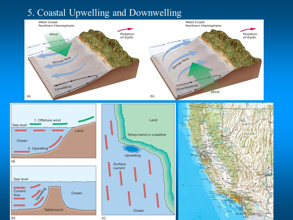 5. Coastal Upwelling and Downwelling
