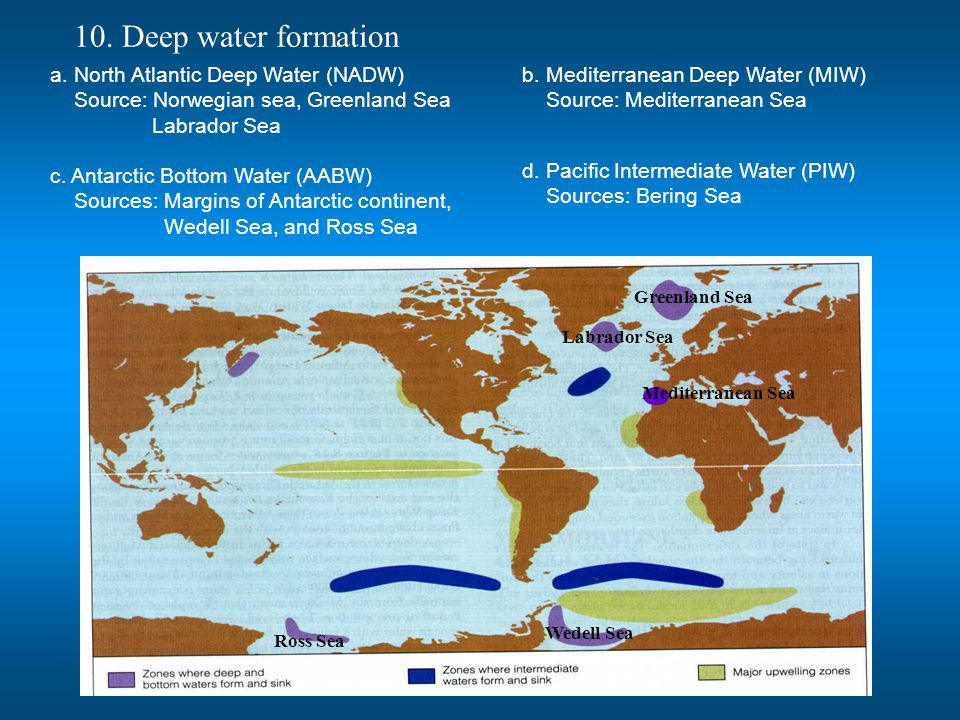 10. Deep water formation a. North Atlantic Deep Water (NADW)