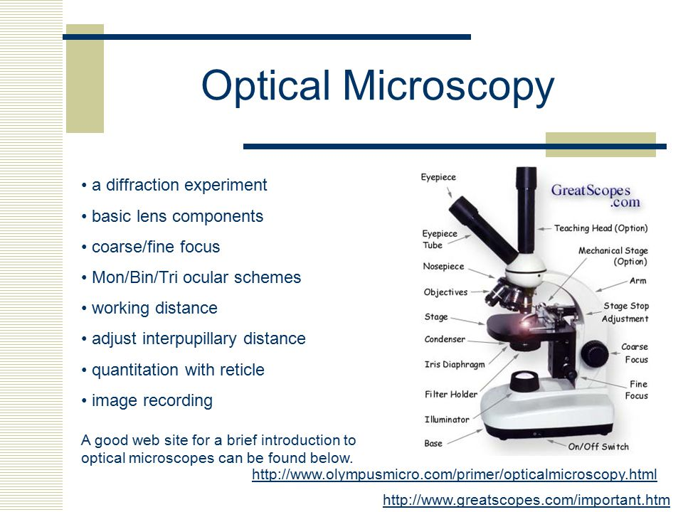 Optical Microscopy • a diffraction experiment • basic lens components