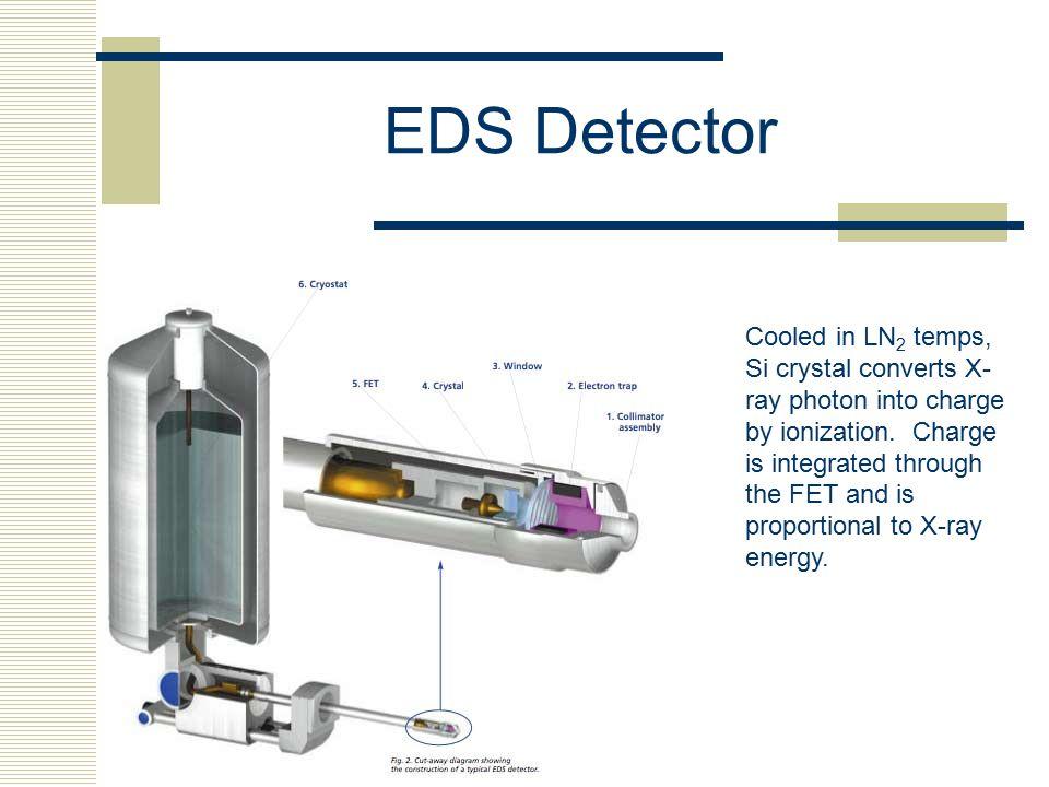 EDS Detector