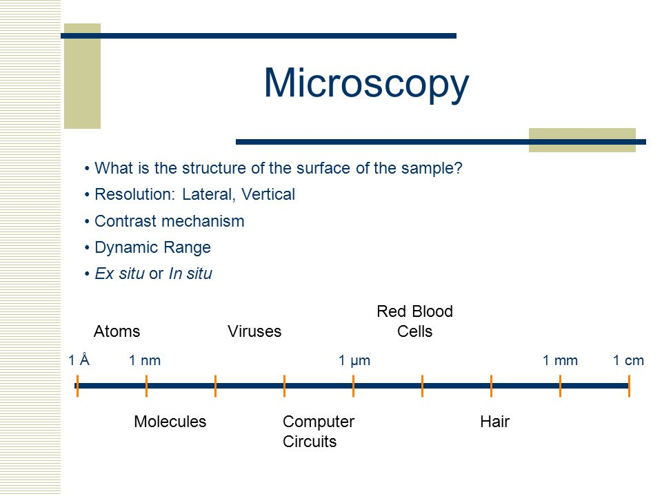 Microscopy • What is the structure of the surface of the sample
