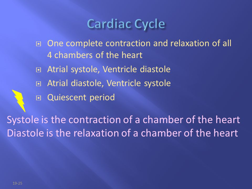 Cardiac Cycle Systole is the contraction of a chamber of the heart