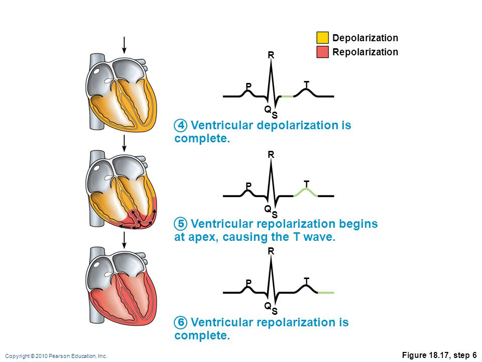 Ventricular depolarization is complete.
