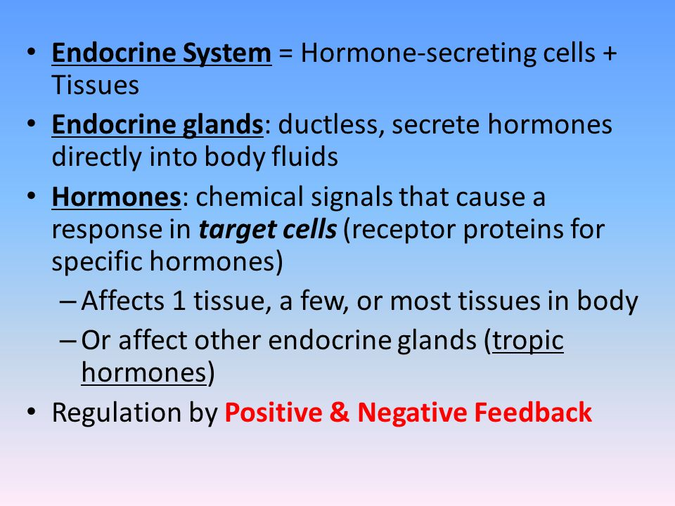 Endocrine System = Hormone-secreting cells + Tissues