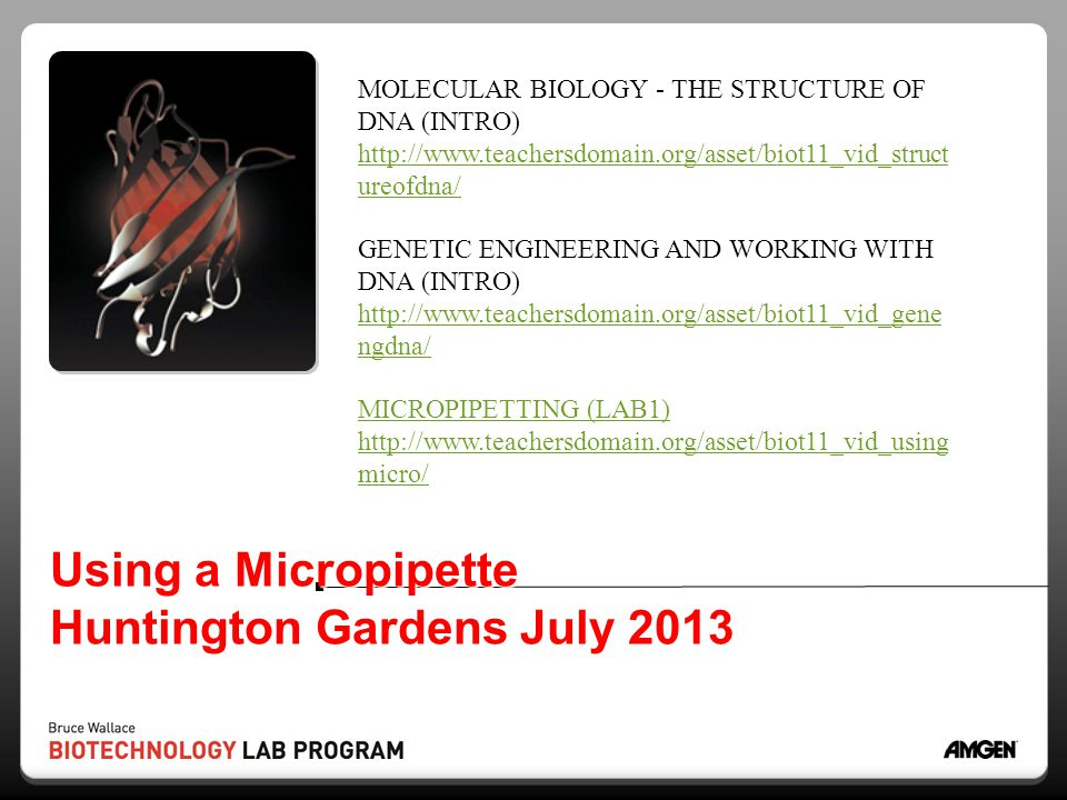 Using a Micropipette Huntington Gardens July 2013
