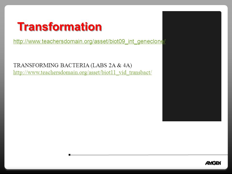 Transformation http://www.teachersdomain.org/asset/biot09_int_geneclone/ TRANSFORMING BACTERIA (LABS 2A & 4A)