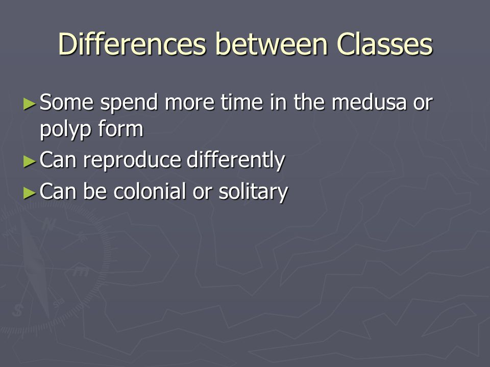 Differences between Classes