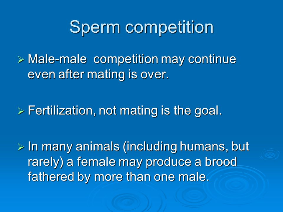 Sperm competition Male-male competition may continue even after mating is over. Fertilization, not mating is the goal.