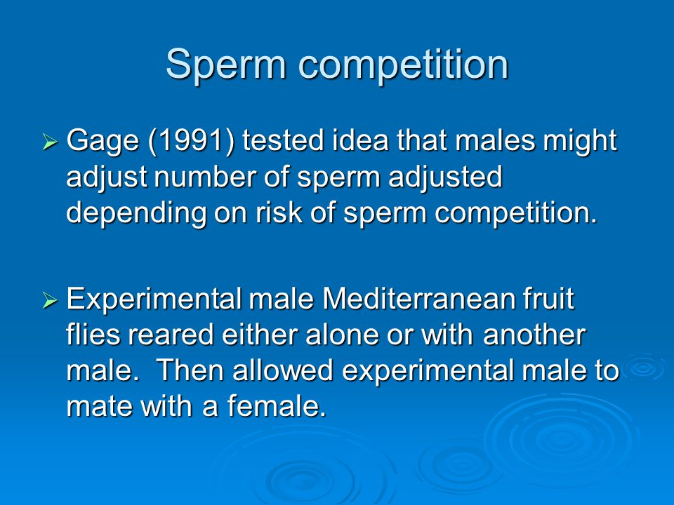 Sperm competition Gage (1991) tested idea that males might adjust number of sperm adjusted depending on risk of sperm competition.