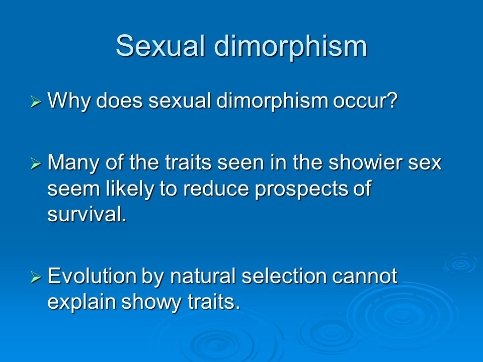 Sexual dimorphism Why does sexual dimorphism occur