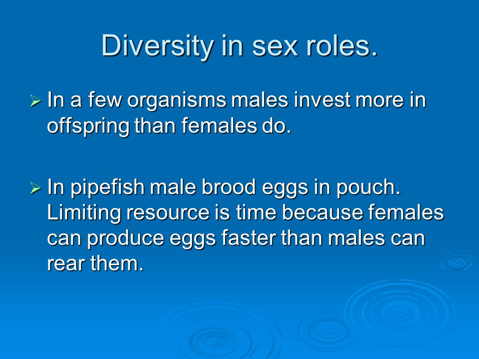 Diversity in sex roles. In a few organisms males invest more in offspring than females do.