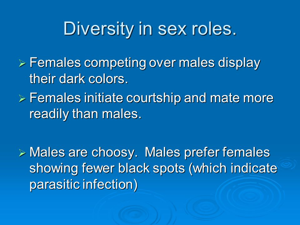 Diversity in sex roles. Females competing over males display their dark colors. Females initiate courtship and mate more readily than males.