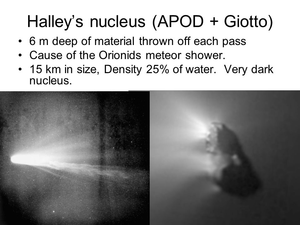 Halley's nucleus (APOD + Giotto)