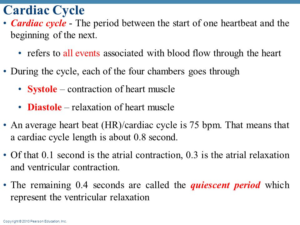 Cardiac Cycle Cardiac cycle - The period between the start of one heartbeat and the beginning of the next.