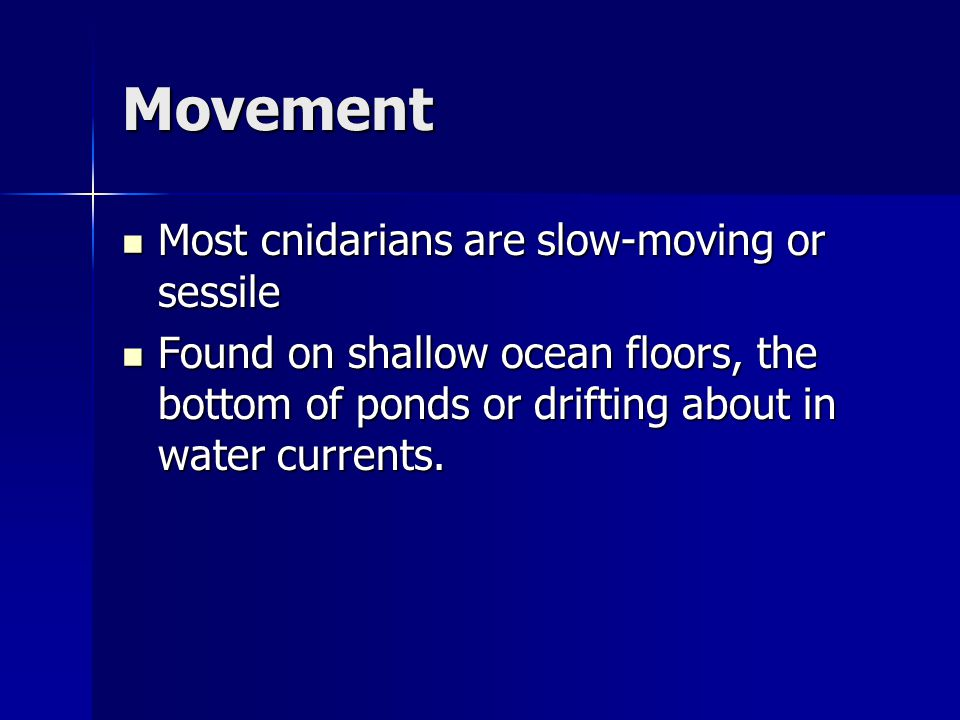 Movement Most cnidarians are slow-moving or sessile