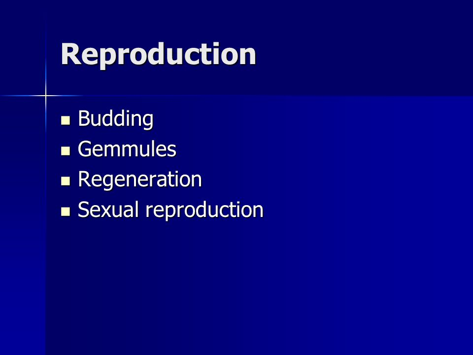 Reproduction Budding Gemmules Regeneration Sexual reproduction
