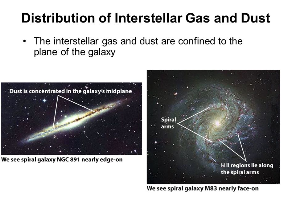 Distribution of Interstellar Gas and Dust