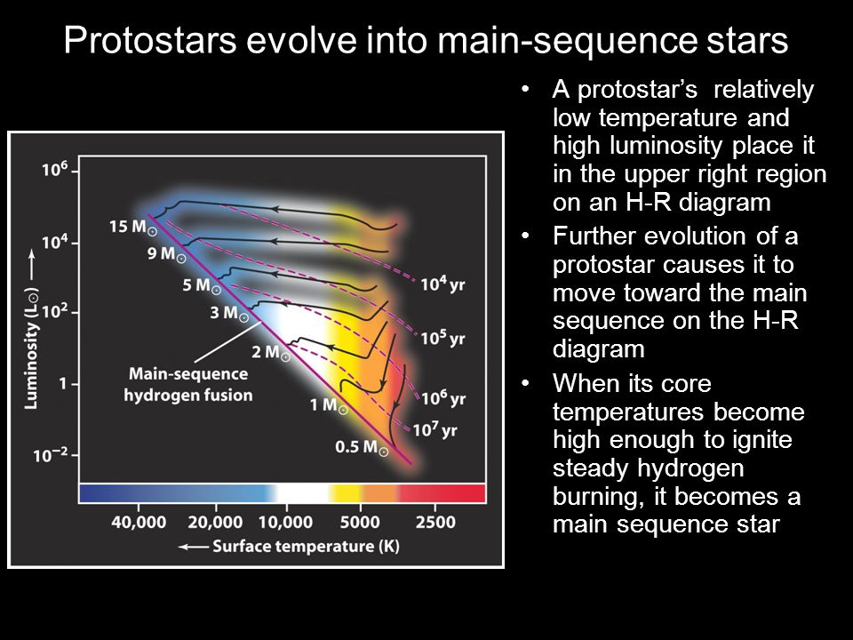 Protostars evolve into main-sequence stars