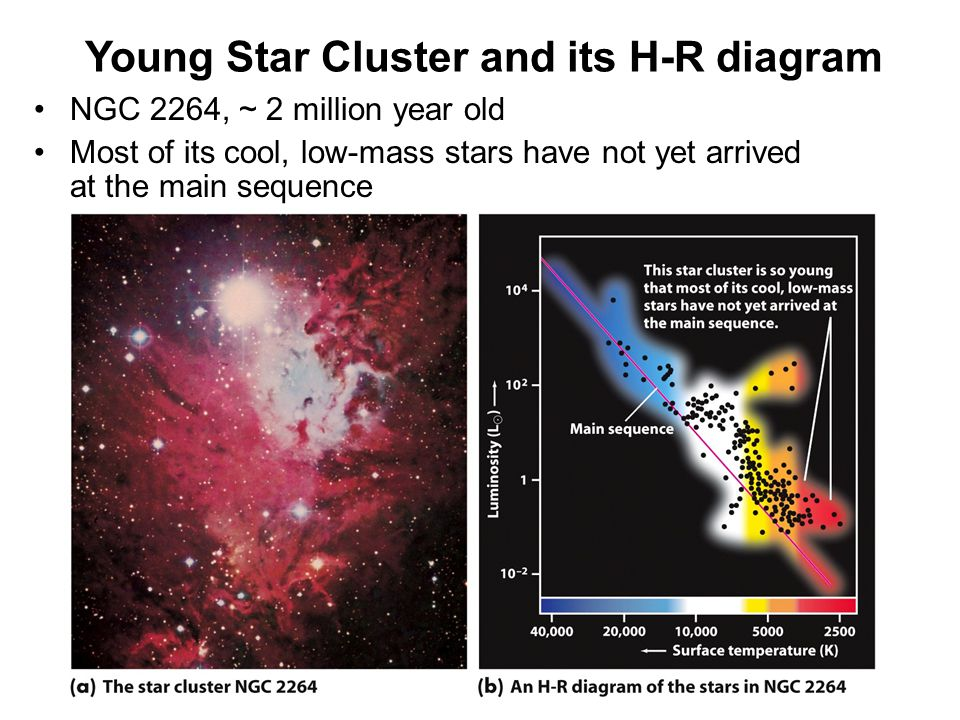 Young Star Cluster and its H-R diagram