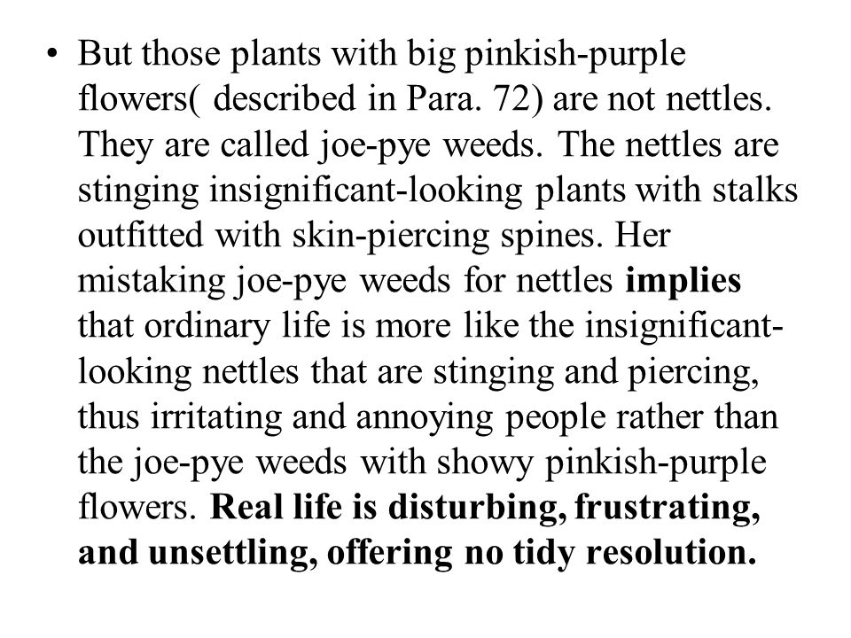 But those plants with big pinkish-purple flowers( described in Para
