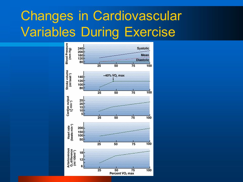 Changes in Cardiovascular Variables During Exercise