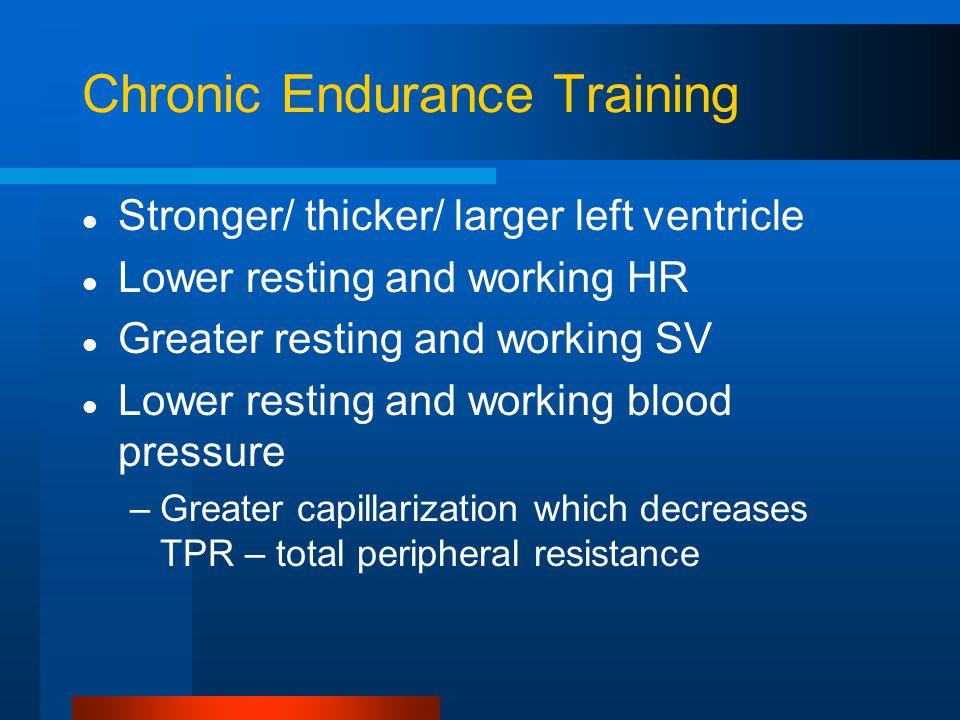 Chronic Endurance Training