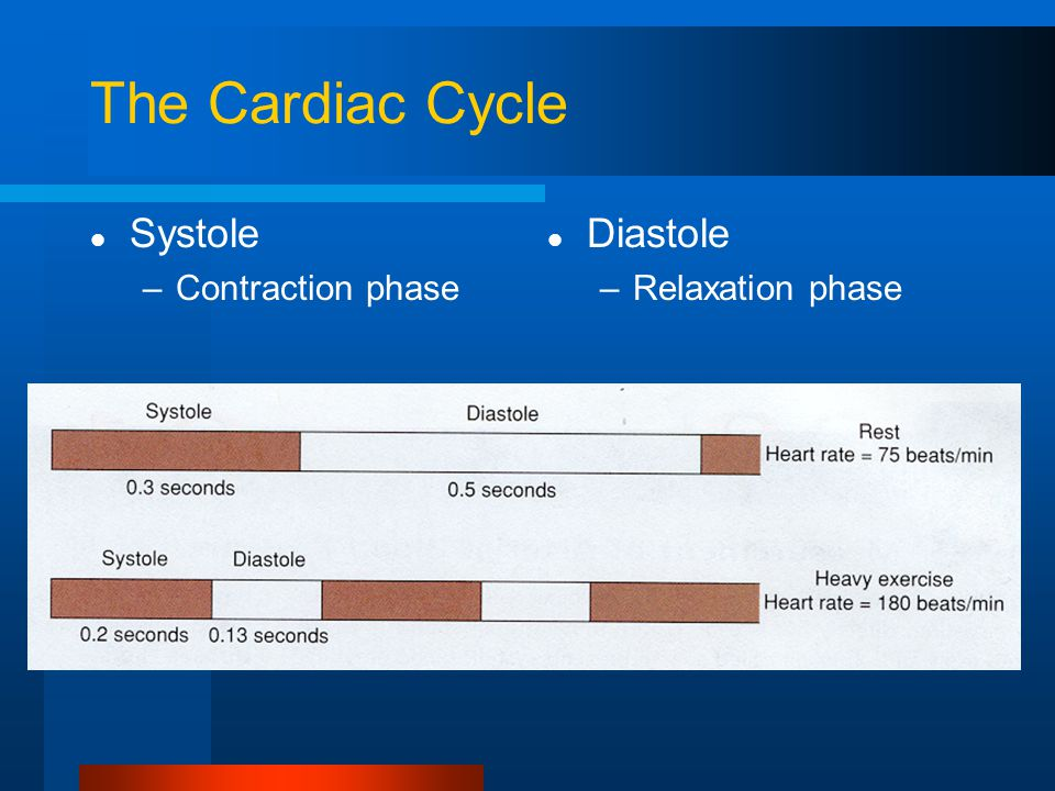 The Cardiac Cycle Systole Contraction phase Diastole Relaxation phase