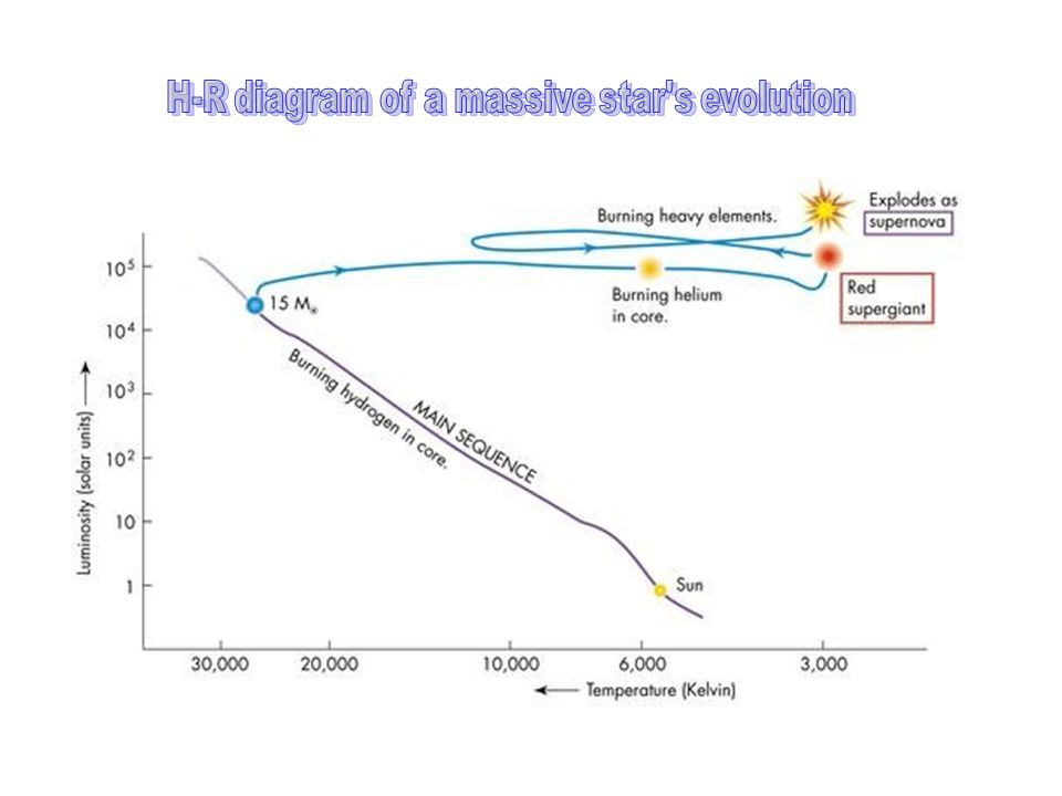 H-R diagram of a massive star s evolution