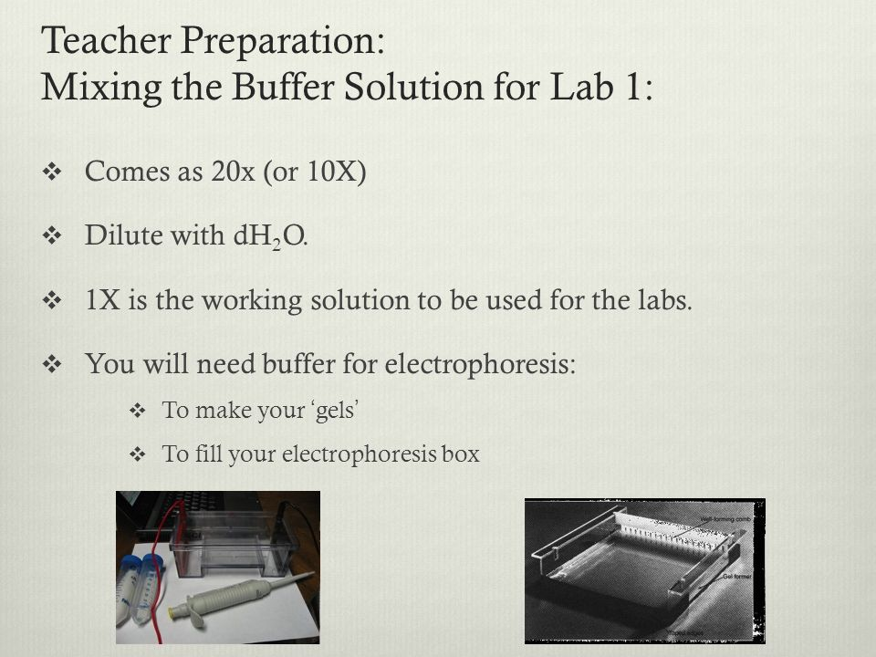 Teacher Preparation: Mixing the Buffer Solution for Lab 1: