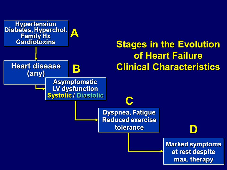 Stages in the Evolution Clinical Characteristics