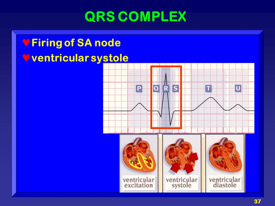 QRS COMPLEX Firing of SA node ventricular systole