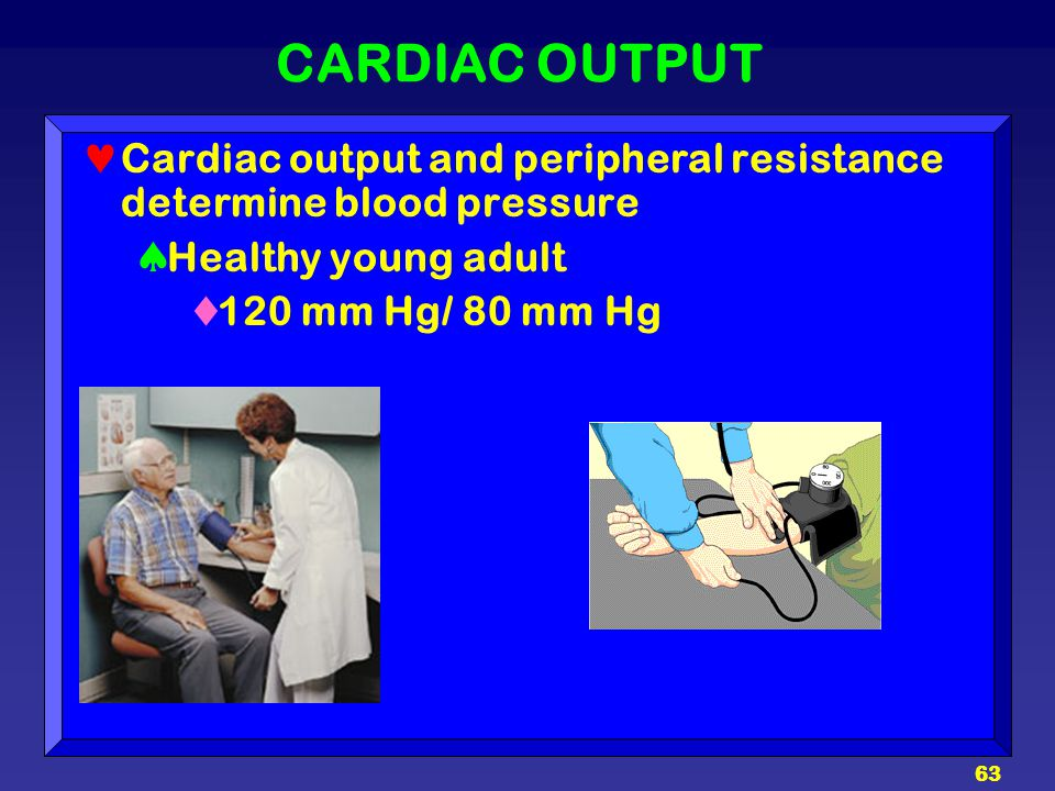 CARDIAC OUTPUT Cardiac output and peripheral resistance determine blood pressure. Healthy young adult.