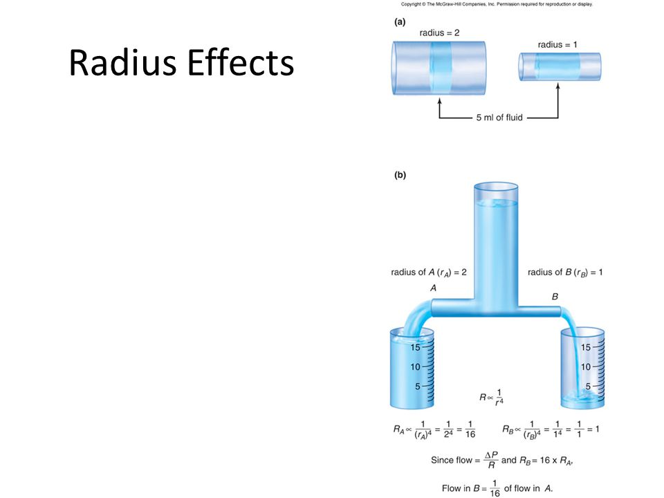 Radius Effects