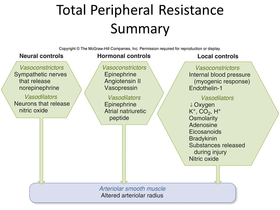 Total Peripheral Resistance Summary
